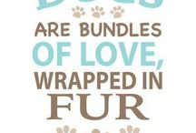 Fur Baby / Love our littles