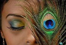 My Peacock Obsession / by Laurel Davis