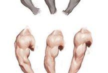 Arms tutorials
