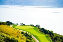 Favorite Golf Holes / WCI Communities creates amenity-rich, master-planned lifestyle communities, catering to primary, retirement and second-home buyers. Our fantastic golf courses include The Colony Golf & Bay Club, Lost Key Golf Club, Raptor Bay, Pelican Preserve, Tiburón Golf Club and Venetian Golf & River Club.
