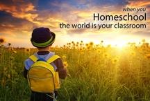 Homeschool  / by Megan Clark