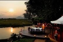 Come Dine With Me in Africa / Amazing dinner venues in the bush. #safari #Zambia #Zimbabwe