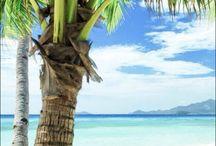 BEACH / BEACH inspiration ✩ Beaches in the World ✩ de mooiste afbeeldingen gespot op internet   not all pictures are ours ✩