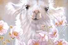 Animals / by Barbara OKeefe