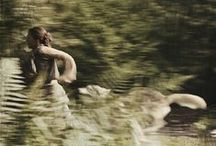 {running with wolves} / knowing and living with a wild thing left me forever changed.   / by Flotsam Jetsam