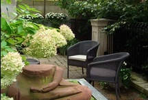 TOPIARIUS Fine Gardening / Topiarius' Fine Gardening services focus on the health and appearance of your property, based on best practices in the green industry. We offer a variety of services throughout all seasons from weekly to monthly visits.