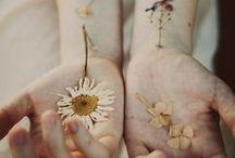 Flowery Soul