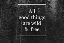 Free as we'll ever be....