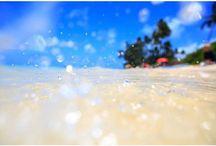 PAK OK SUN / PHOTOGRAPHER
