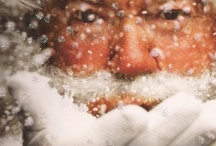 Seasonal - Christmas wonder / its the most wonderful time of the year! / by Nicole Smart