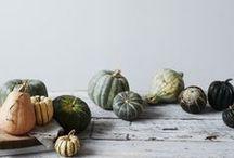 pumpkin / by Iriko Seto