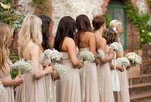 Wedding Planner / Wedding ideas! ❤️ / by Alyse Malavasi