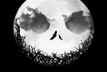 Halloween / by Aubrey Lund