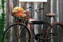 bicycles / i have no bicycle, but i want to ride one anyway / by Tanya