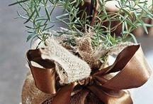 Favor & Handmade Gift / by Lorraine Vargas
