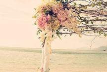 Wedding ideas for future / by Lysha Noble