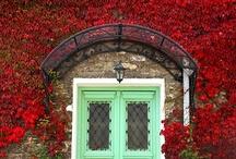 Colorful Door,Window