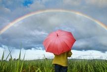Rainbows / by Vicky Logan