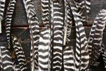 feathers / feathers, feathers diy, feather bouquet, feather centerpieces, feather arrangements