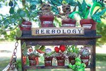 Herbology / Botany & herbal medicine Nature's Alchemy / by She's Crafty