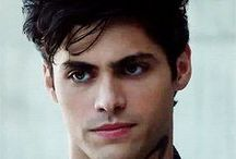 Alec Lightwood/Matthew Daddario / ,,I'm not your bitch.""