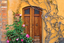 gates & doors  / by Manuela Mora