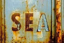 Wabi Sabi / There is an inherent beauty in everything! Old, rusty, peeling and faded...all has beauty