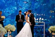 Beautiful Weddings / A collection of beautiful weddings to inspire your own.