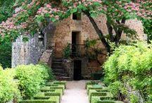 Flowers &Gardens