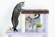 CAT FRIENDLY APARTMENT / Cool ideas for cat lovers. Cat furniture, shelves, scratch post, tower, bed for happy kitties and catlovers