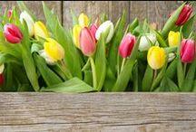 Endlich Frühling / Zeit für eine Style Party ;)