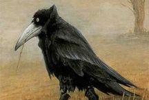 Crows & Ravens / by Bob Prestridge
