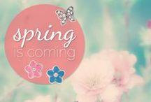 Spring is coming! / Der Frühling rückt immer näher und wir wollen mit dir unsere Freude auf den Frühling teilen. :-)