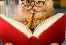 Tierische Bücherfreunde / Tiere mögen Bücher! #Katze #Hund #Buch #Lesen #niedlich www.melusineswelt.de