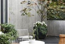 Eenig & Garden and Balcony / Tuin en Balkon