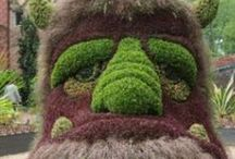 Topiaries / Flower and plant topiaries / by LM Nelson Author
