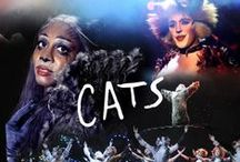 CATS / Jellicles do and jellicles would follow this board