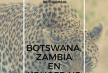 Traveltips Botswana, South-Africa, Zambia / Traveltips and pictures about Africa