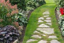 Landscaping / Landscaping ideas| Landscaping Front Yard | Landscaping Ideas Front Yard | Landscaping Ideas Back Yard | Landscaping| Landscaping Back Yard