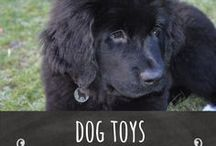 Dog Toys / Dogs need lots of toys to keep them engaged and stop them from getting bored, check out all the different toys available for dogs.