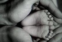 hands & feeds