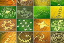 crop circles / by Gail HaysConner