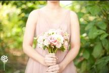 Bouquets + Boutonieres / Bridal and Bridesmaid Bouquets Groom and Groomsmen Boutonieres
