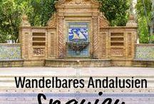 Spanien (Andalusien) - Ein Reisebericht / Andalusien - in einer der schönsten Regionen Spaniens ist Abwechslung garantiert, nicht nur landschaftlich. Wunderschöne Paläste und Gärten, interessante Städte, Whale Watching, Affen und Westernstädte standen auf dem Programm – und das alles zwischen Meer und Bergen, Wüsten und Schluchten, Afrika und einem winzigen Stück England.  Route und Reisebericht komplett auf www.mythirdblog.de/reisebericht-spanien-andalusien-2013