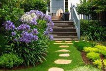 Сад, огород, природа