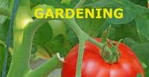 GARDENING / VEGETABLE GARDENING; GROWING HERBS; GROWING FRUIT TREES AND BERRIES