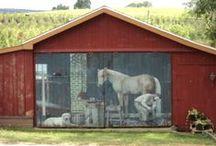 Barns / by Christine Gassman