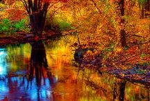 """......AND IT'S AUTUMN / by Barbara Kean"