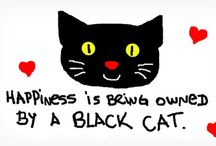 Black Cats ❤️ / by Julia Carswell Sweitzer