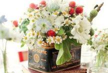 ❖ Flower stories ❖